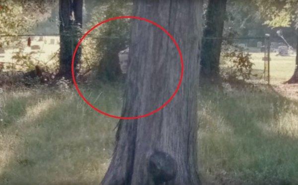 На Google Maps нашли призрак ребенка, который разгуливал по кладбищу