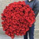 101 роза – чудесный подарок по поводу и без